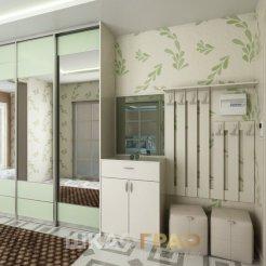 Шкаф-купе в прихожую с зеркальными дверями Graf № 50 4