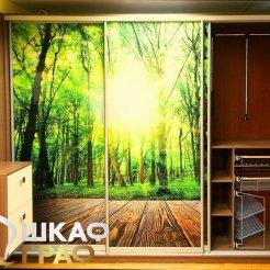 Шкаф-купе в коридор с фотопечатью лес