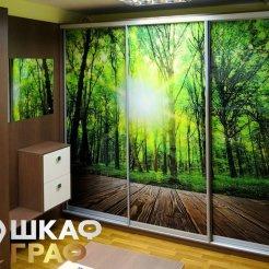 Шкаф-купе в прихожую с фотопечатью лес