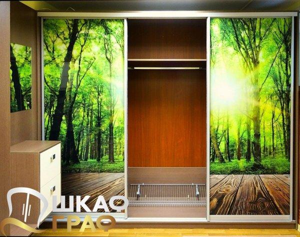 Шкаф-купе для прихожей с фотопечатью лес