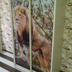 Шкаф-купе для спальни с фотопечатью лев