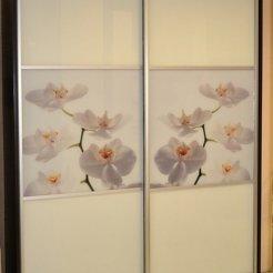 Шкаф-купе с лакобелем и фотопечатью цветы