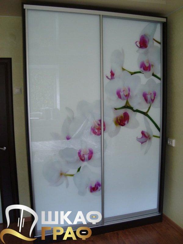 Двухдверный шкаф-купе с фотопечатью цветы